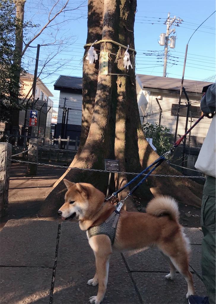 f:id:tetsujin64go:20200101105143j:image