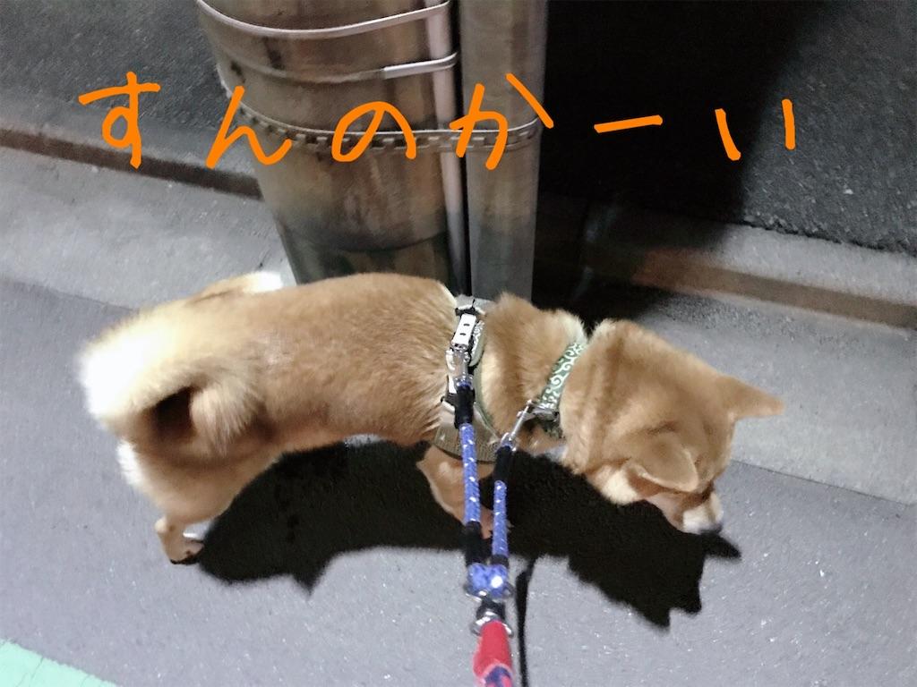 f:id:tetsujin64go:20200101175937j:image