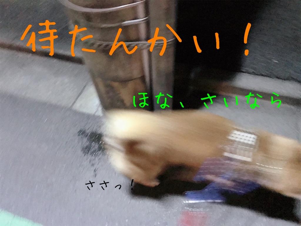 f:id:tetsujin64go:20200101175941j:image