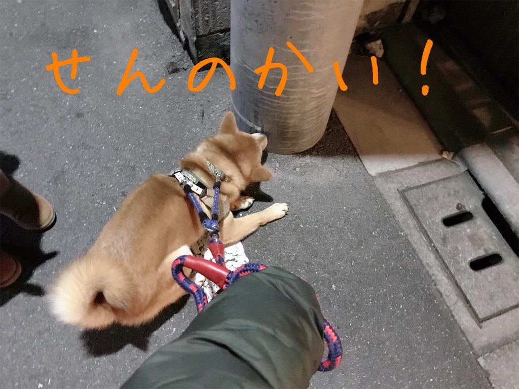 f:id:tetsujin64go:20200101175949j:image