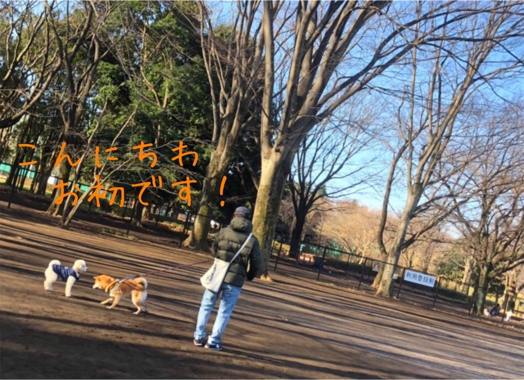 f:id:tetsujin64go:20200103153145j:image