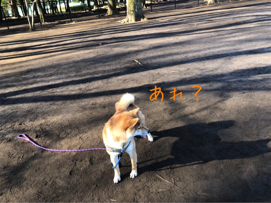 f:id:tetsujin64go:20200103153151j:image