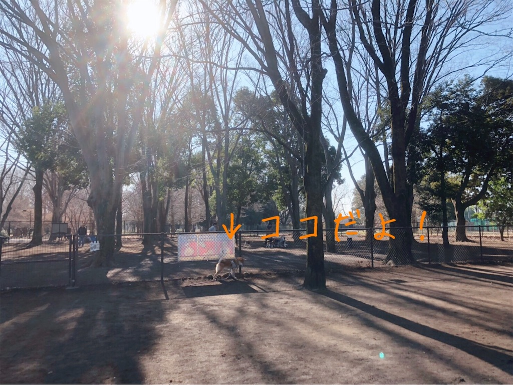 f:id:tetsujin64go:20200103153159j:image
