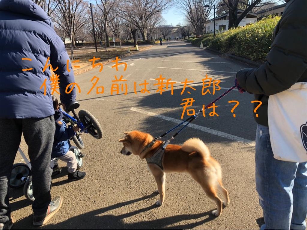 f:id:tetsujin64go:20200103153831j:image