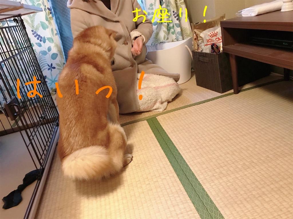 f:id:tetsujin64go:20200105171221j:image