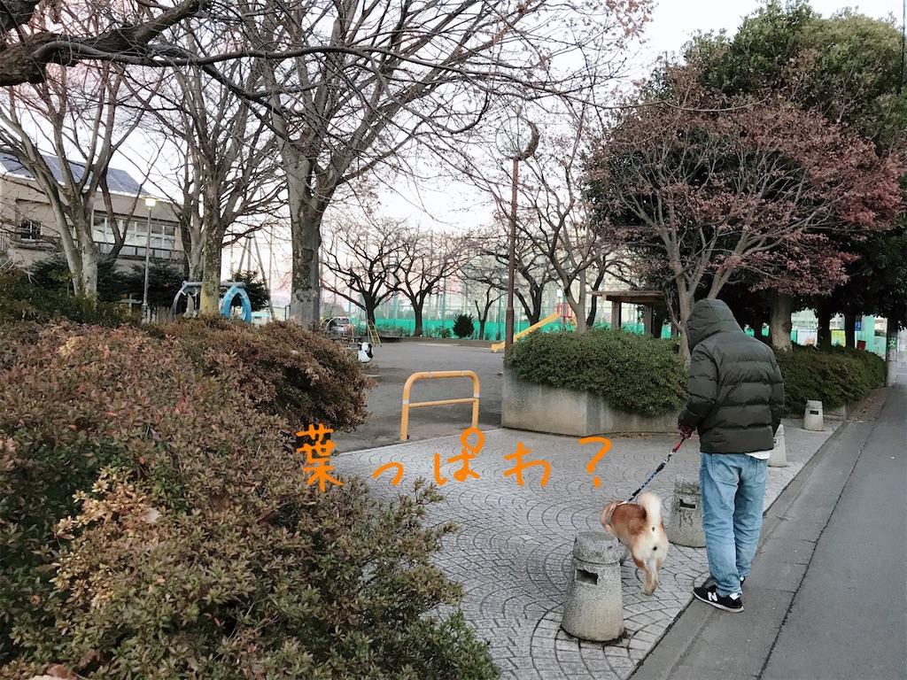 f:id:tetsujin64go:20200105171245j:image