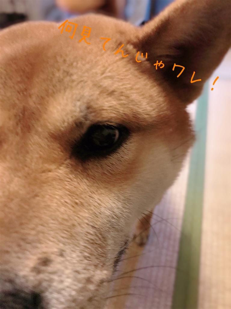 f:id:tetsujin64go:20200105171248j:image