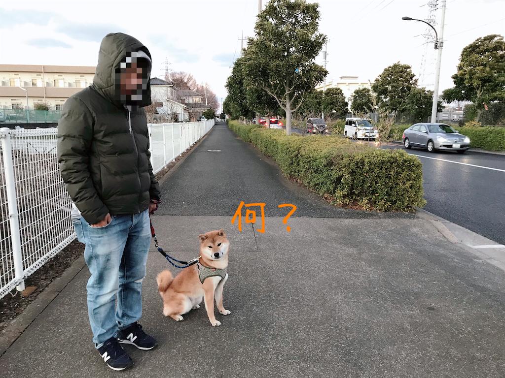 f:id:tetsujin64go:20200105171726p:image