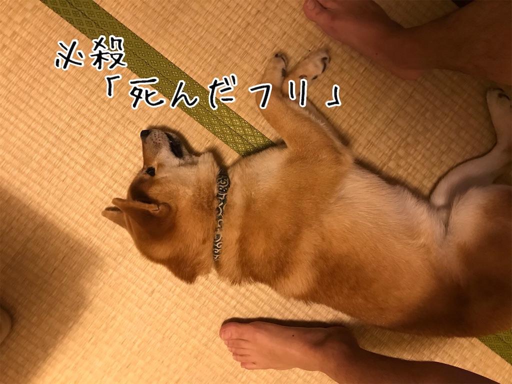 f:id:tetsujin64go:20200106221743j:image