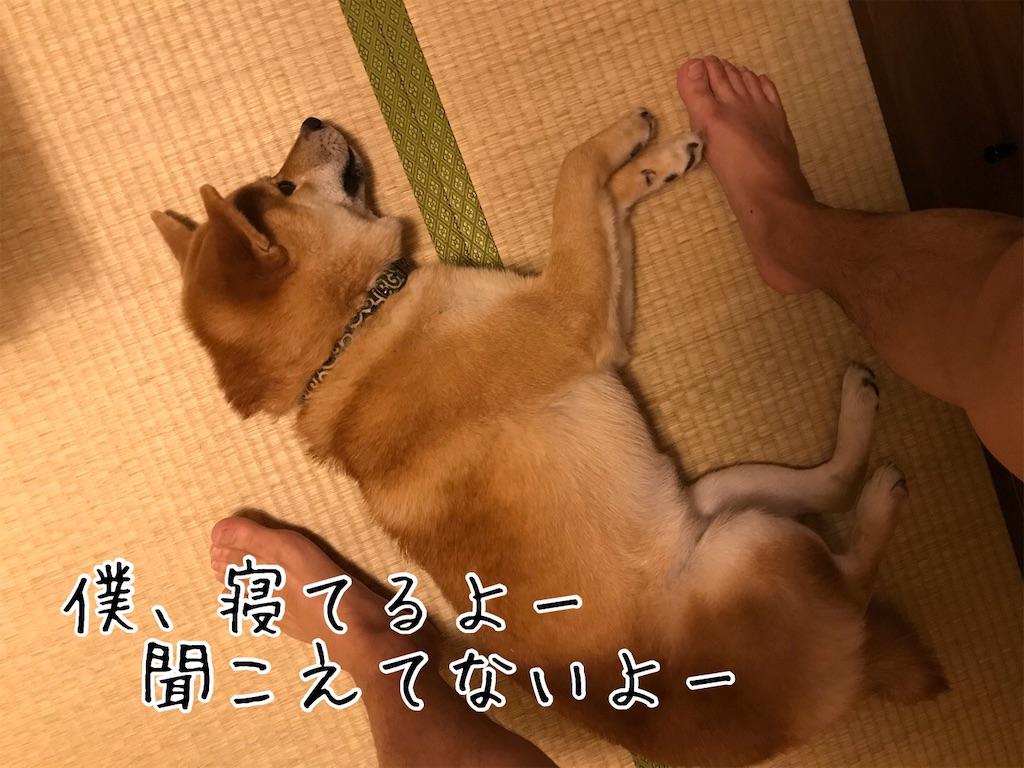 f:id:tetsujin64go:20200106221747j:image