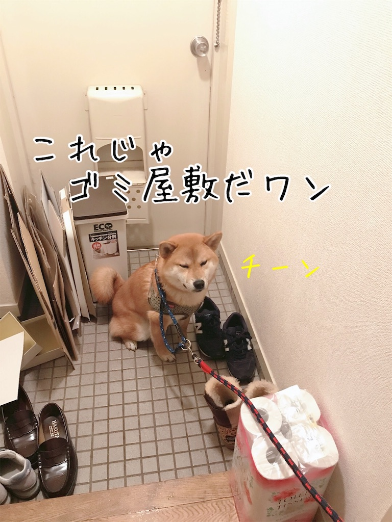 f:id:tetsujin64go:20200108092727j:image