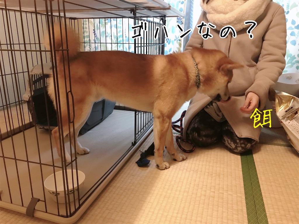 f:id:tetsujin64go:20200108092734j:image