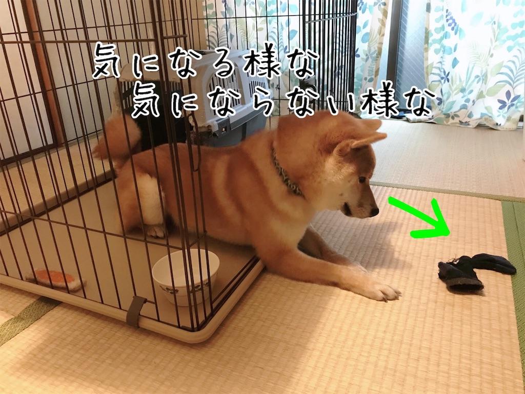 f:id:tetsujin64go:20200108092738j:image