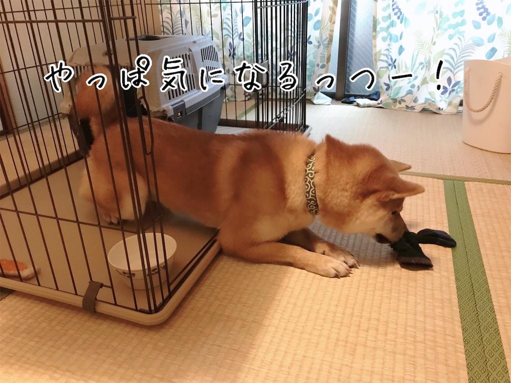 f:id:tetsujin64go:20200108092741j:image