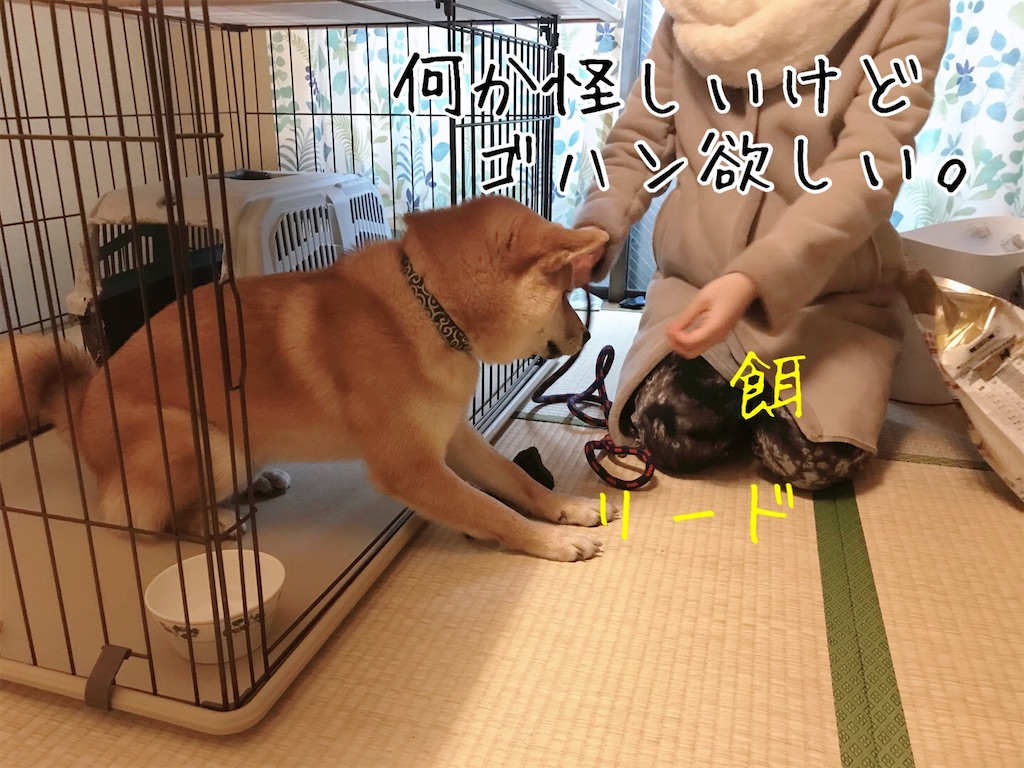 f:id:tetsujin64go:20200108092743j:image