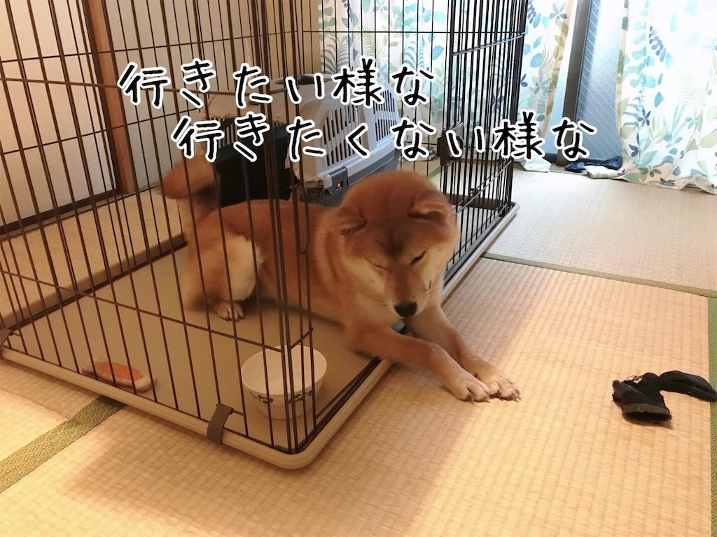 f:id:tetsujin64go:20200108092747j:image