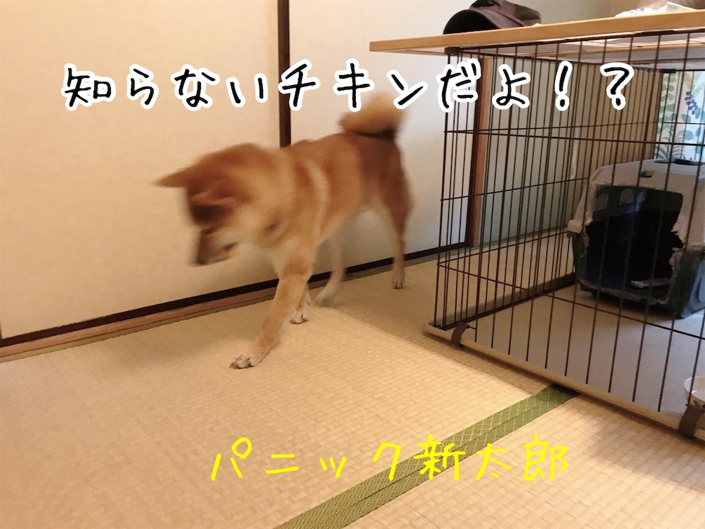 f:id:tetsujin64go:20200108164237j:image