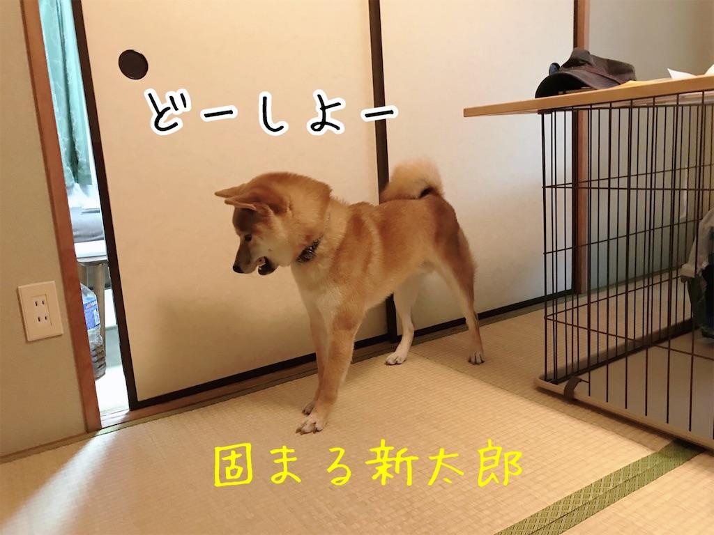 f:id:tetsujin64go:20200108164240j:image