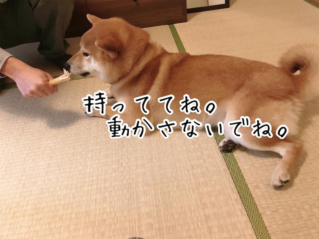f:id:tetsujin64go:20200108164249j:image