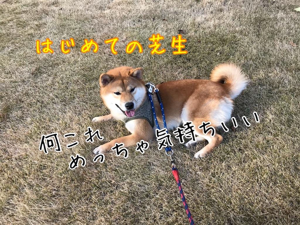 f:id:tetsujin64go:20200111200956j:image