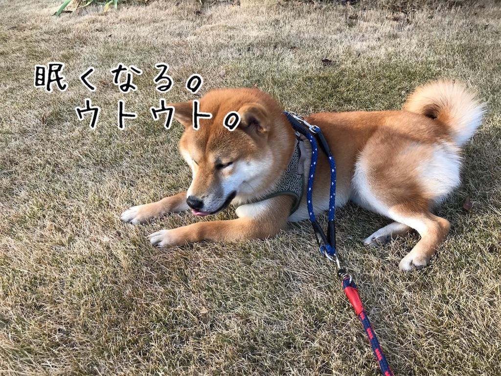 f:id:tetsujin64go:20200111201002j:image