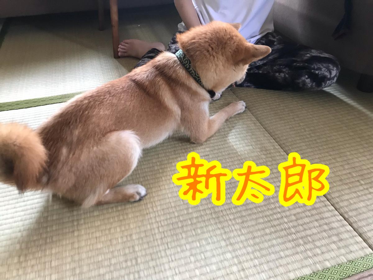 f:id:tetsujin64go:20200117220952j:plain