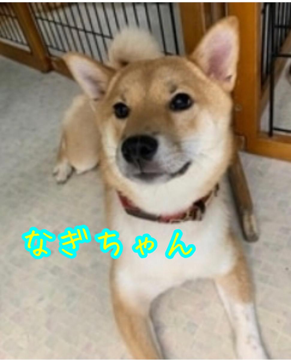 f:id:tetsujin64go:20200117222140j:plain