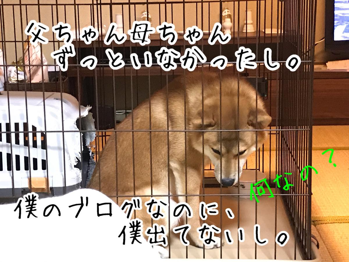 f:id:tetsujin64go:20200119195850j:plain