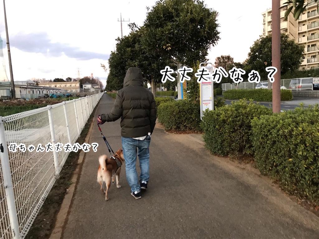 f:id:tetsujin64go:20200121064942j:image