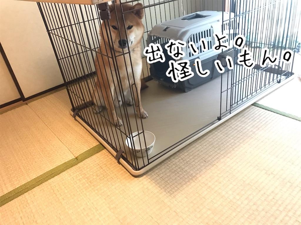 f:id:tetsujin64go:20200121155515j:image