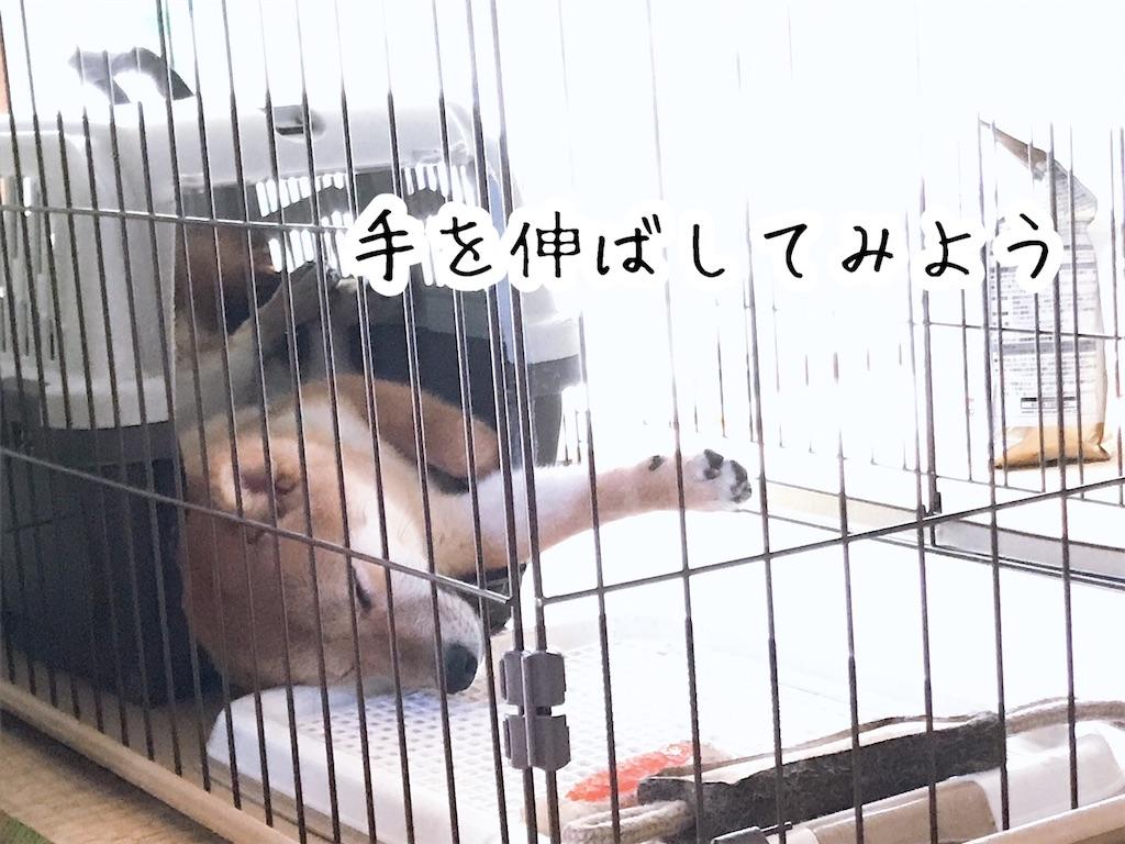f:id:tetsujin64go:20200123101241j:image