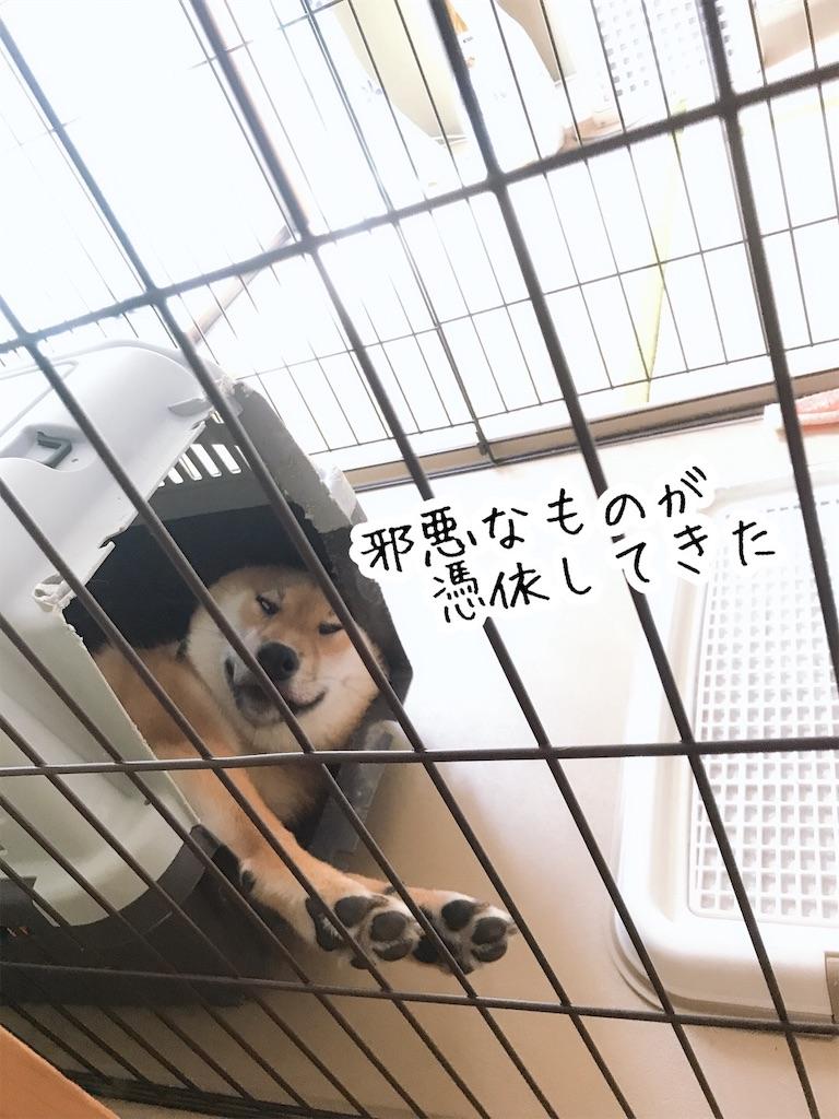 f:id:tetsujin64go:20200123101248j:image