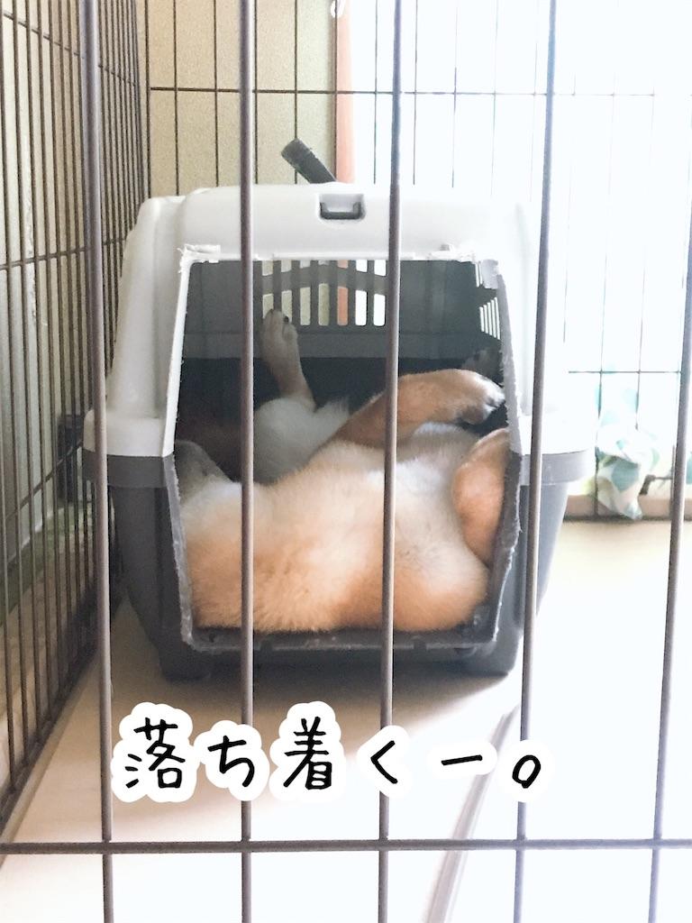 f:id:tetsujin64go:20200123101304j:image