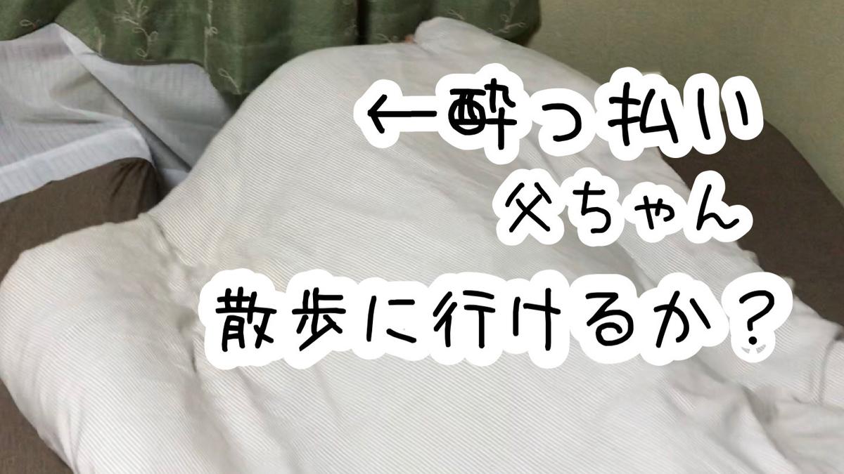 f:id:tetsujin64go:20200130104917j:plain