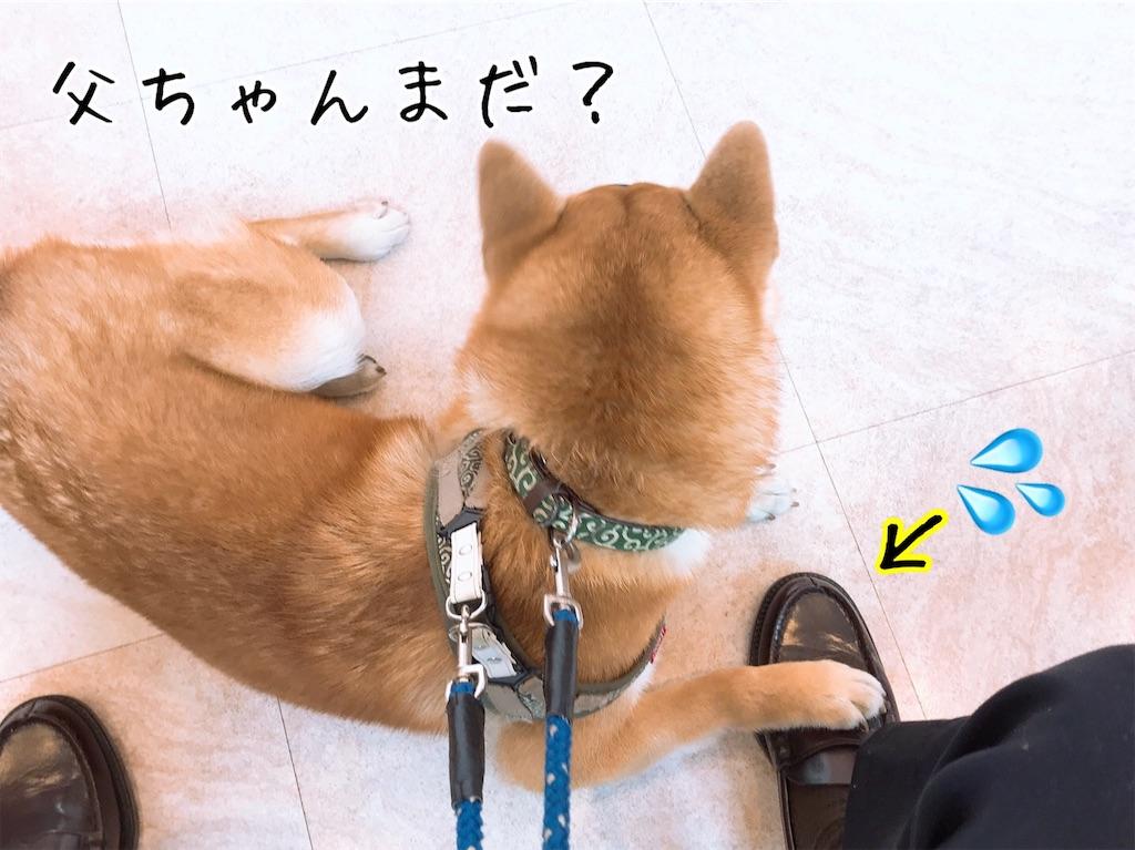 f:id:tetsujin64go:20200217171455j:image