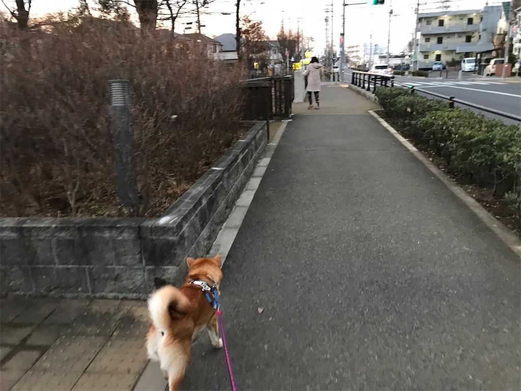 f:id:tetsujin64go:20200220085841j:image