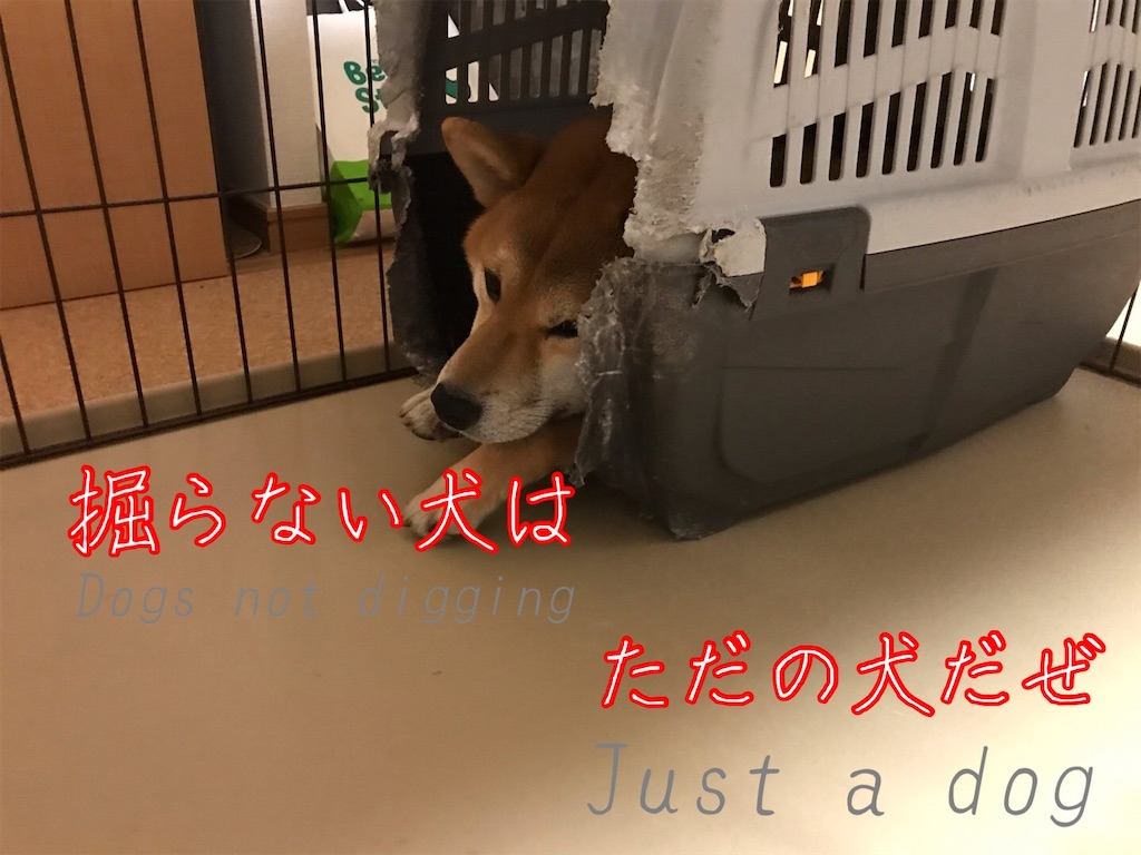 f:id:tetsujin64go:20200227223317j:image