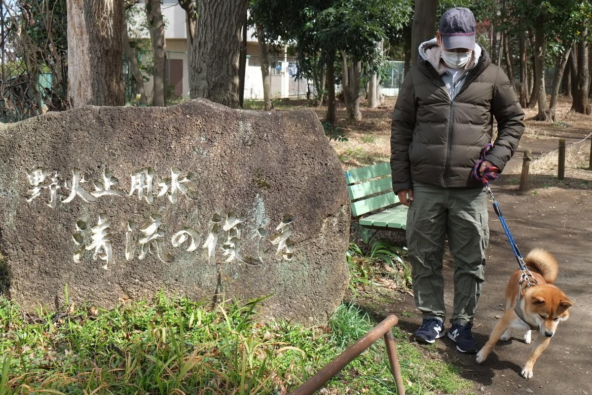 f:id:tetsujin64go:20200305130826j:plain