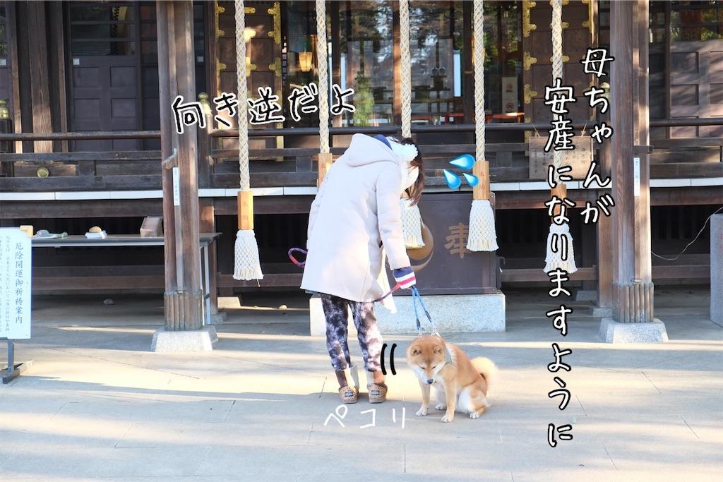 f:id:tetsujin64go:20200306095852j:image