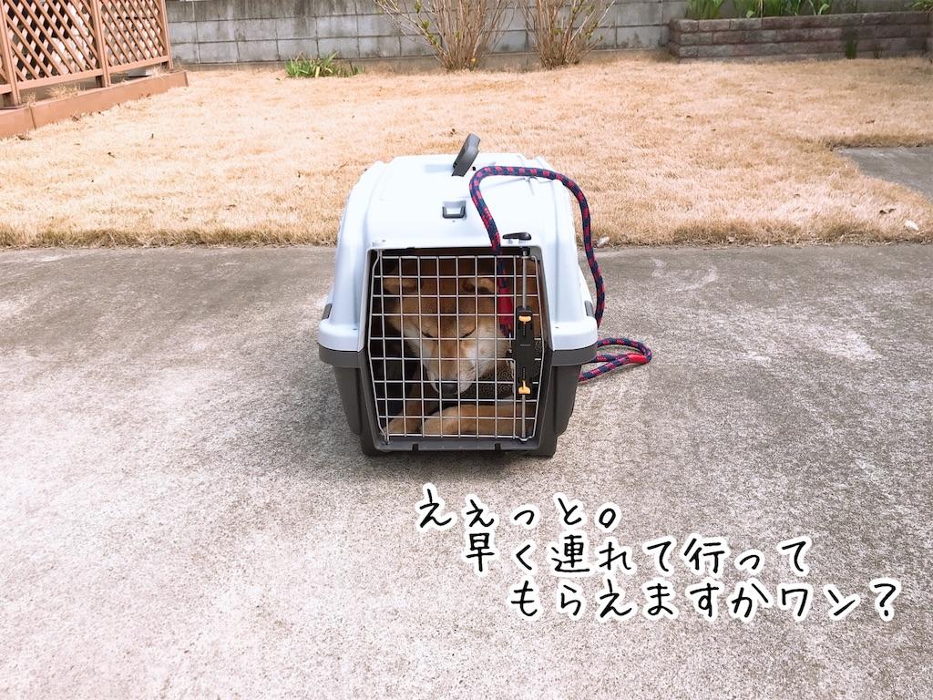 f:id:tetsujin64go:20200313125104j:image