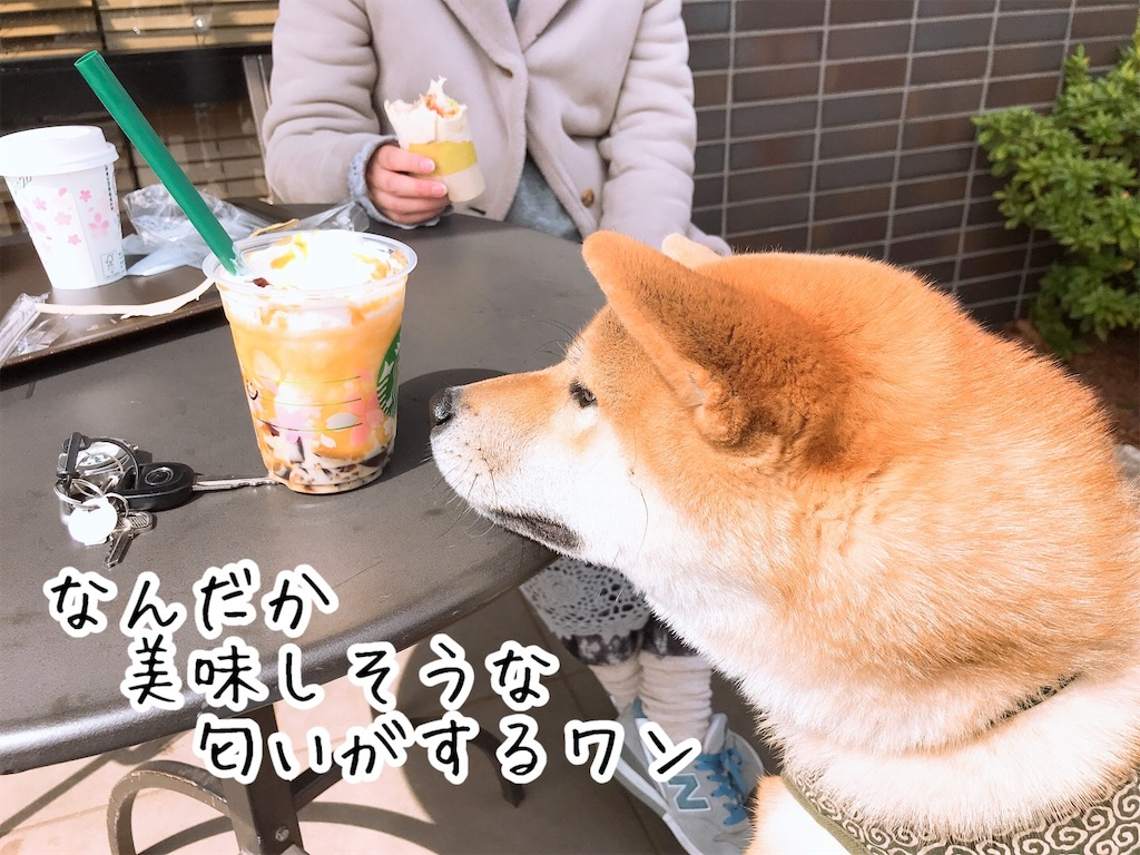 f:id:tetsujin64go:20200313125126j:image