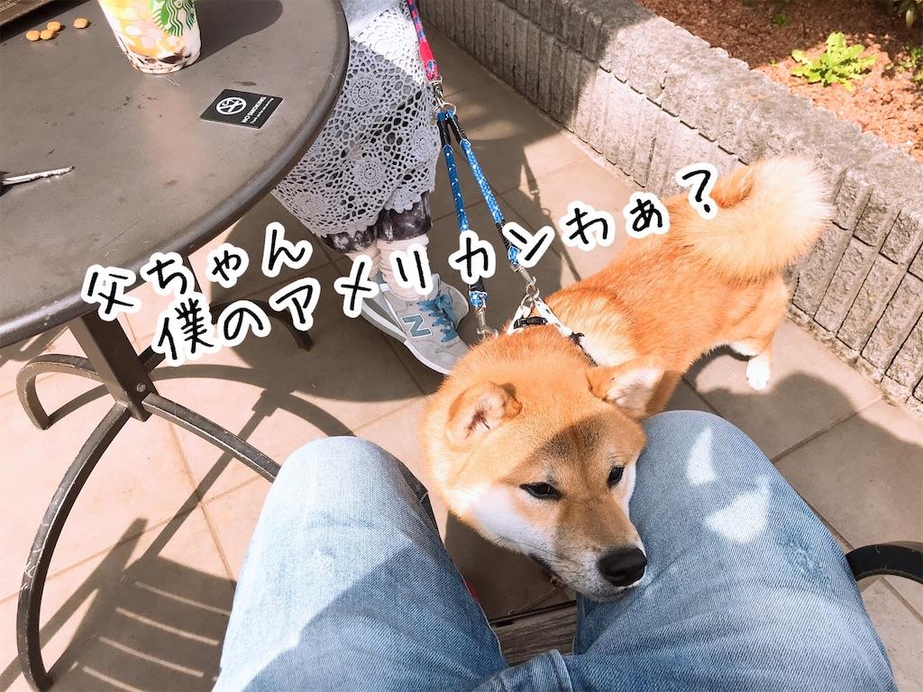 f:id:tetsujin64go:20200313125128j:image
