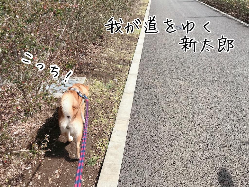 f:id:tetsujin64go:20200315114512j:image