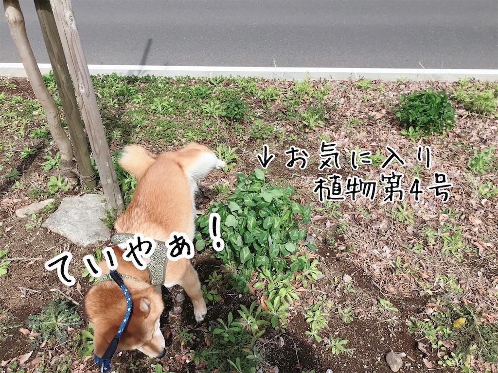 f:id:tetsujin64go:20200315114658j:image