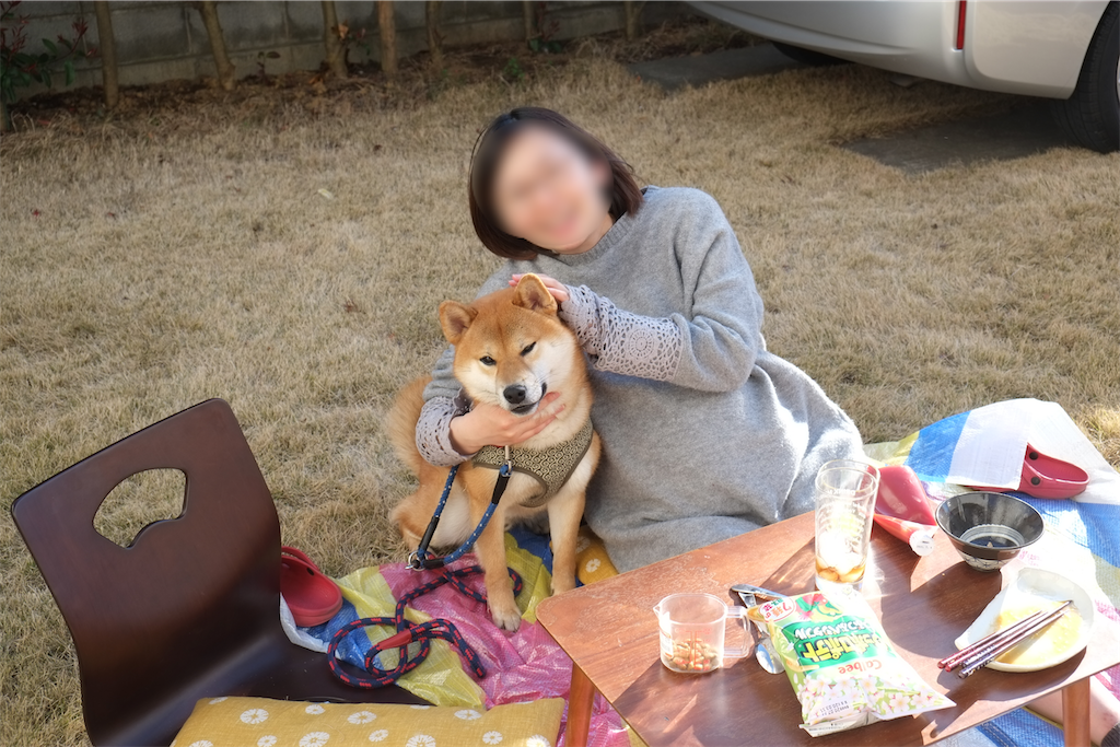 f:id:tetsujin64go:20200320165213p:image