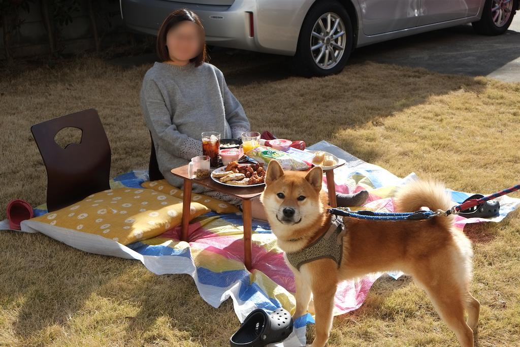 f:id:tetsujin64go:20200320165237p:image