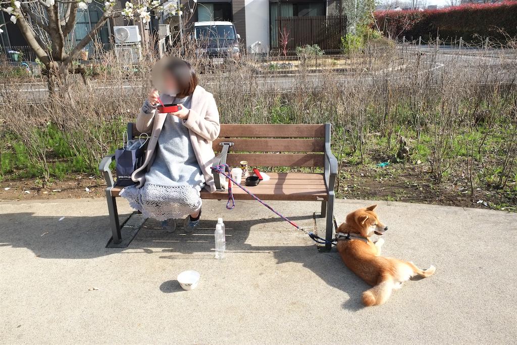 f:id:tetsujin64go:20200321093941p:image