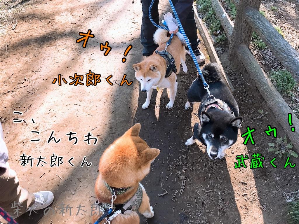 f:id:tetsujin64go:20200324100533j:image