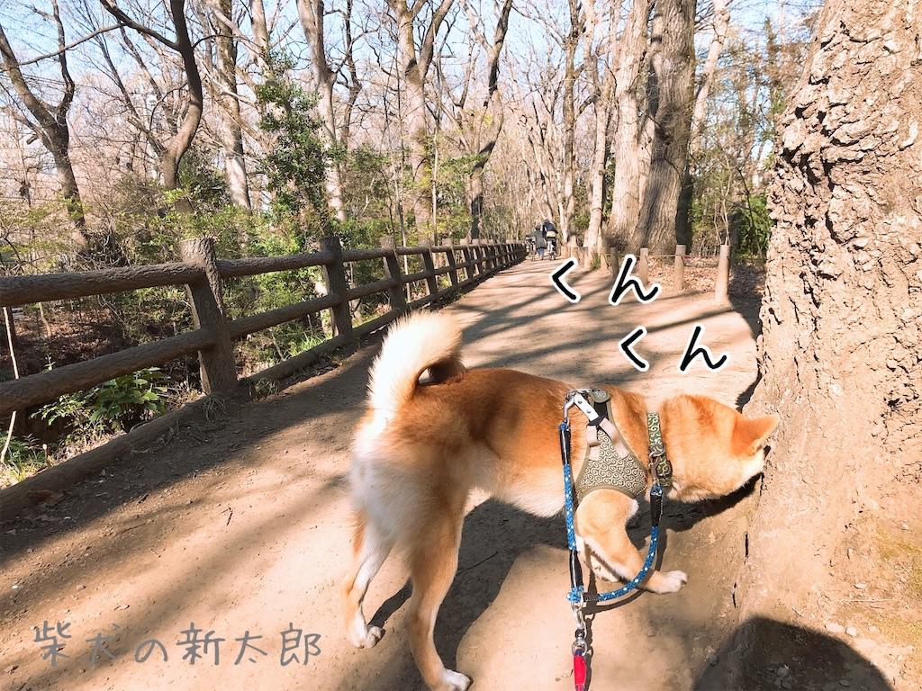 f:id:tetsujin64go:20200324100539j:image