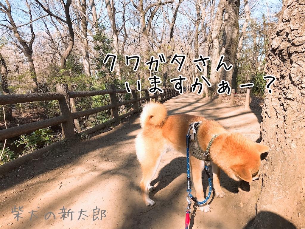 f:id:tetsujin64go:20200324100542j:image